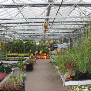 Gärtnerei Innenbereich
